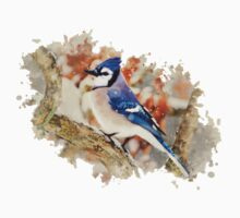 Bluejay Watercolor Art Kids Clothes