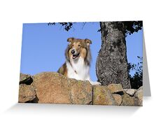 Out for a Hike Greeting Card