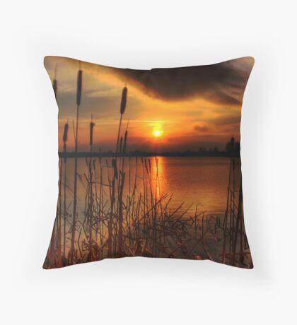 bullrush Sunset Throw Pillow