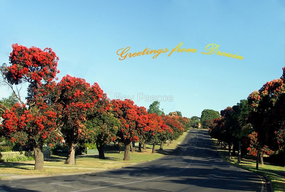 Greetings from Drouin, Australia by Bev Pascoe