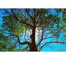 blu sky Photographic Print