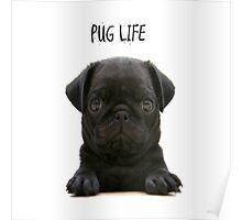 Pug Life Poster