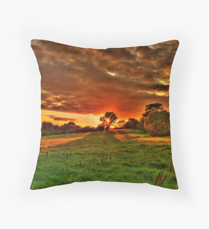 Sunset Shadow Throw Pillow