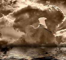 Soaring Free Yet Alone by George Lenz