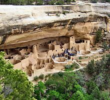 Cliff Palace, Mesa Verde National Park by Laurie Puglia