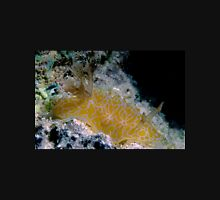 Goldspotted Halgerda, Great Barrier Reef Unisex T-Shirt