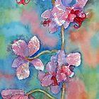 Pink Ladies by bevmorgan