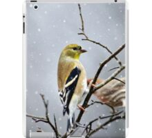 Christmas Goldfinch iPad Case/Skin