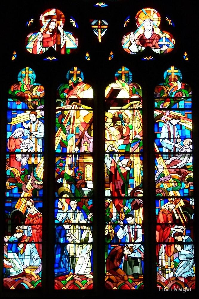 St. Julien Collegiate Church, Tournon-sur-Rhône by Trish Meyer