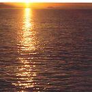 Sunset #1     Vancouver Island  by gypsykatz