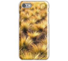 Tall Grass Afternoon iPhone Case/Skin