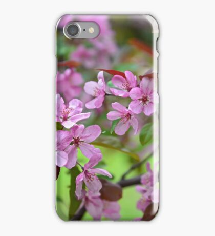 Apple Blossoms in the Air iPhone Case/Skin