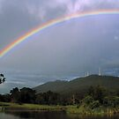 Mount Dandenong, Melbourne, Victoria. by Ern Mainka