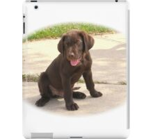 CHOCOLATE LAB PUPPY iPad Case/Skin