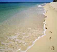 Footprints in the Sand by Honor Kyne