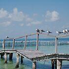 Pier on Isla Mujeres by Chris van Raay
