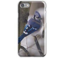Striking Blue iPhone Case/Skin