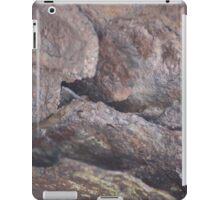 Slices of Rusty Metal iPad Case/Skin