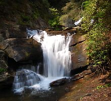 Dukes Creek Falls by Chris Chandler