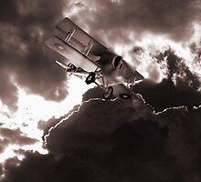 flying high by Di Dowsett