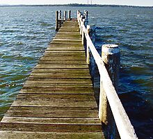 the jetty, Lake Budgewoi  by adam pearson