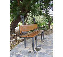 """""""Just a bench in the park."""" Photographic Print"""