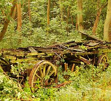 CART AT FOXLEY WOOD - NORFOLK by ANNETTE HAGGER