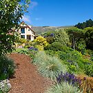 House and Garden, French Farm, Banks Peninsula, New Zealand. by johnrf