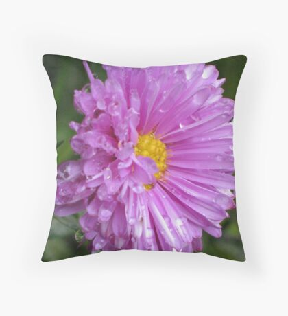 Soaking Wet Throw Pillow