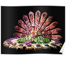 Pink Floral Peacock  Poster