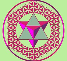 Flower of Life & Star Tetrahedron  by John Girvan