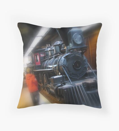 Looking Into The Past Throw Pillow