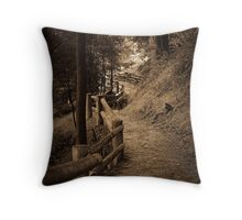 Guide Falls Track...... Throw Pillow