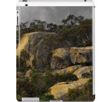 Granite. iPad Case/Skin