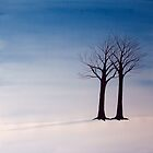 Two Trees in Field of Snow by David Hayward