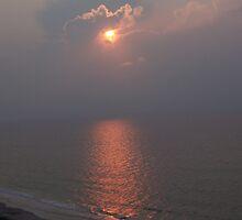 Sun and go Seek!!  by tonyballance