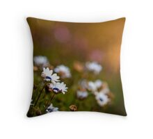 If passion drives you, let reason hold the reins... Throw Pillow