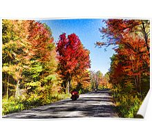 Colorful Bike Ride - Impressions Of Fall Poster