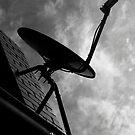 Satelite Dish by Aden Brown