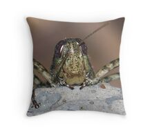 A Better View, To Look At You! Throw Pillow