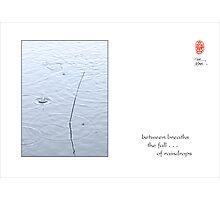 between breaths Photographic Print
