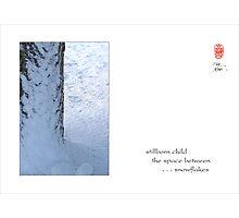 stillborn child Photographic Print
