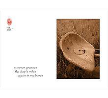 summer grasses Photographic Print