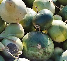 Green Gourds by MBehl