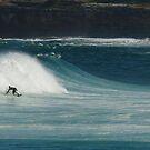 Wave by David Reid