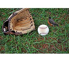 Spring Training Photographic Print