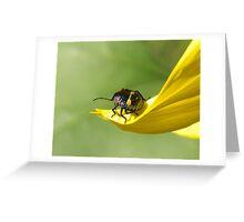Stinkbug Greeting Card
