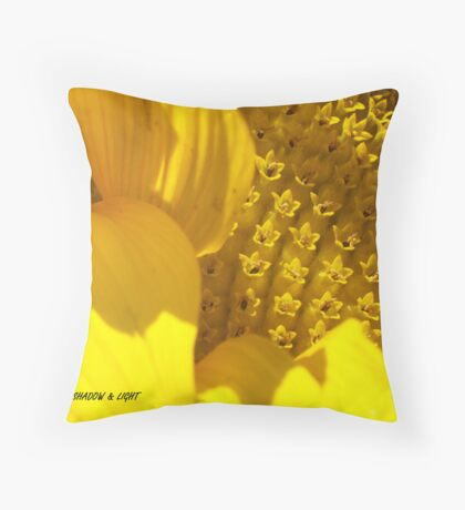 Sunflower Shadow and Light Throw Pillow