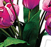 Bunch of Pink Tulips Sticker