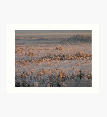Winterview to swamp of Torronsuo Art Print